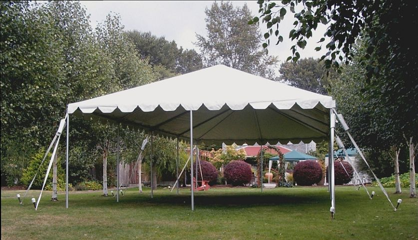 backyard tent ,PARTY TENT RENTAL for sale