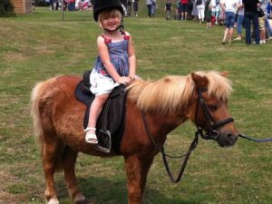 pony rides at home in miami rental