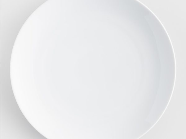 event white dinner plate rentals